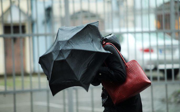 Ceturtdien Latvijā plosīsies vējš; vēss laiks var saglabāties līdz maijam