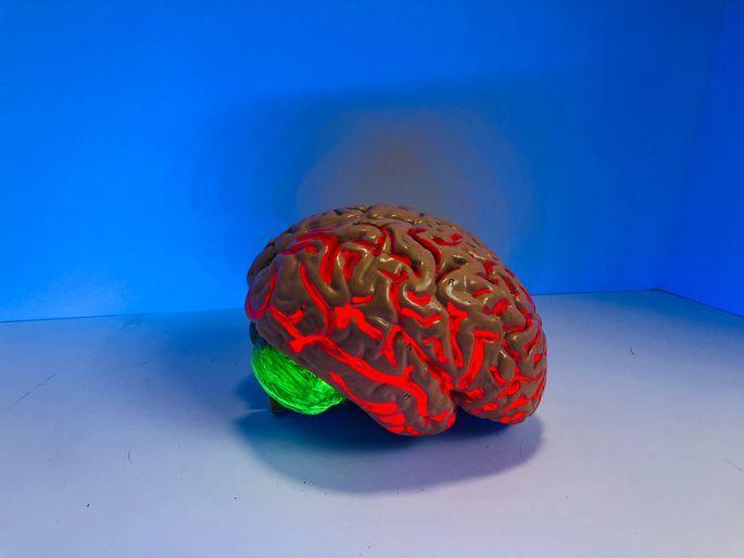 Radīta ierīce, kas darbojas tāpat kā cilvēka smadzenes