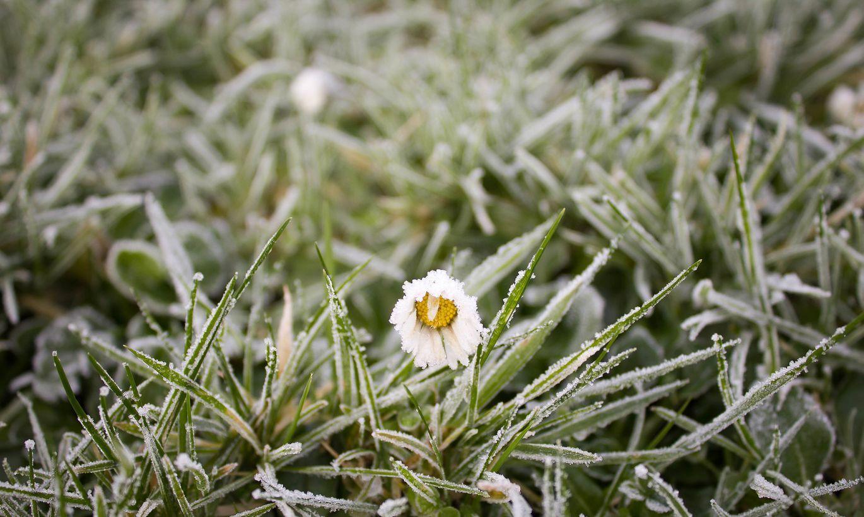 Jau pavisam drīz Latviju šķērsos aukstā atmosfēras fronte