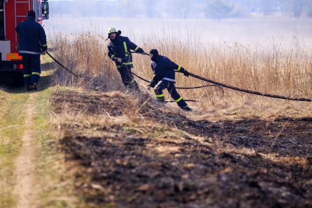 Sestdien Latvijā dzēsti teju 100 kūlas ugunsgrēki