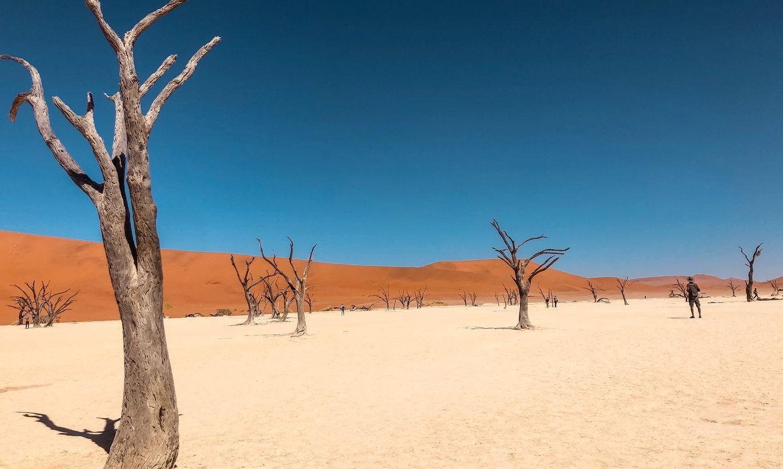 Trīs miljardi pasaules iedzīvotāju nākotnē dzīvos nepanesama karstuma apstākļos